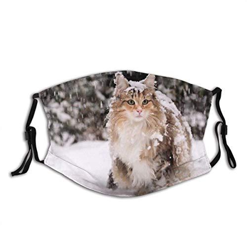 M-A-S-K Gatto delle foreste norvegesi femmina in piedi nella neve con filtro Bandana sciarpa unisex senza cuciture