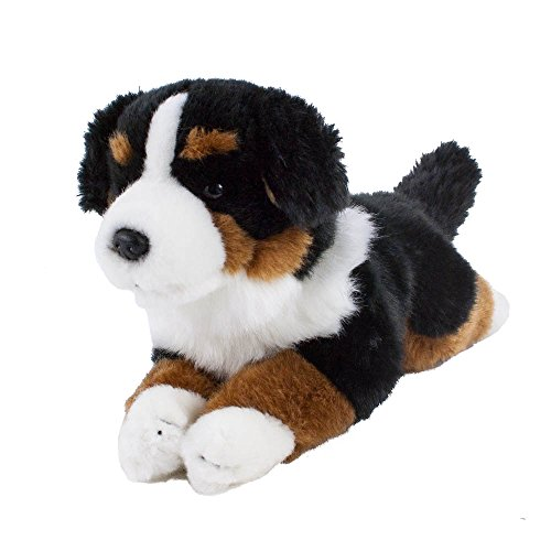 Teddys Rothenburg Kuscheltier Berner Sennen 30 cm liegend braun/schwarz/weiß Plüschhund Plüschbernersennen