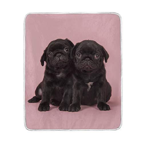 My Daily - Manta de microfibra de poliéster con diseño de cachorros de carlino negro (127 x 152 cm)