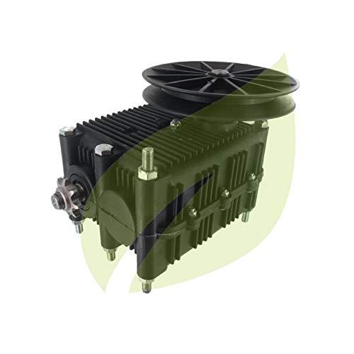 Caja de transmisión cortacésped GGP, Stiga, castegarden Rider EL6318400972/1