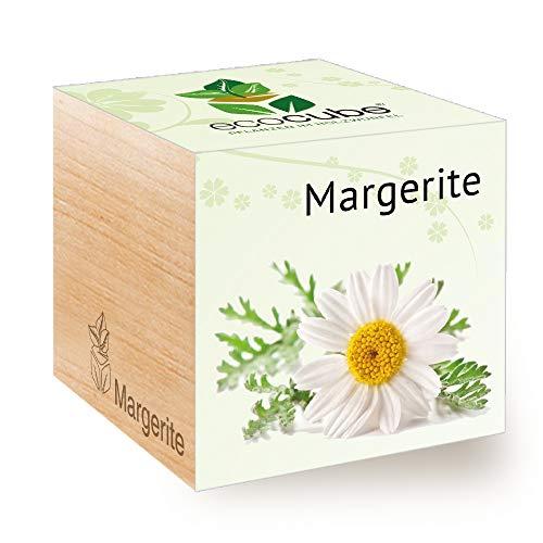 Feel Green Ecocube Margerite, Nachhaltige Geschenkidee (100% Eco Friendly), Grow Your Own/Anzuchtset, Pflanzen Im Holzwürfel, Made in Austria
