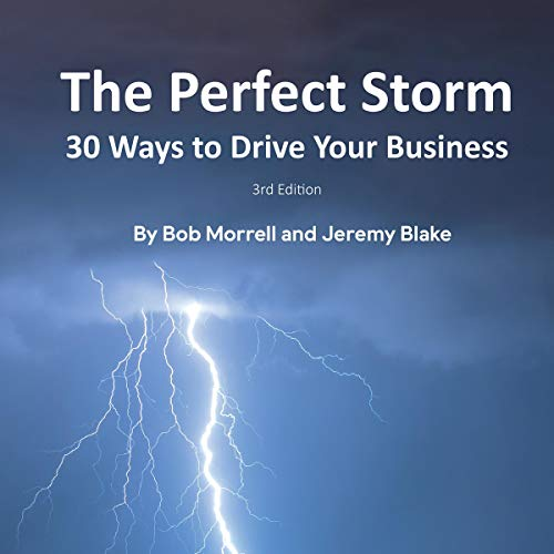 The Perfect Storm: 30 Ways to Drive Your Business cover art