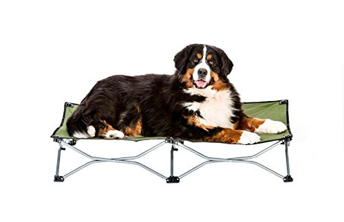 Carlson Pet Products Elevated Dog Bed, Indoor or Outdoor Dog Bed for Large Dogs, Green (8045)