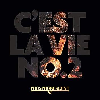 C'est La Vie No.2