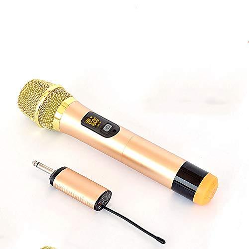 DKEE Universal Stereo Uno con Dos Inicio De Micrófono Inalámbrico For Cantar Ktv Trolley Square Actuaciones U Sección FM Micrófono Box bocina Bluetooth