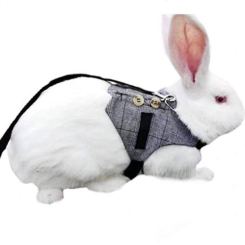 Multipurpose Rabbit Vest Harness and Leash Set Small Animal Adjustable Soft Harness with Button Decor Formal Suit Style for Bunny Rabbit Kitten Small Animal Walking (M)
