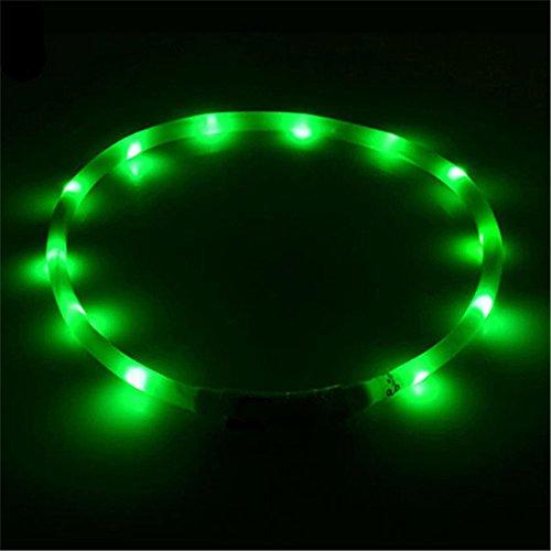 Bodhi2000® LED-Hundehalsband, wiederaufladbar über USB, blinkendes LED-Hundehalsband, Sicherheitshalsband
