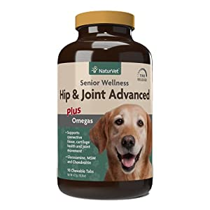 8 Best Senior Dog Vitamins and Supplements (2020)
