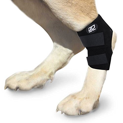 HJZ Dog Hock Rear Joint Brace Splint Wrap for Canine Injuries Protect Wound Support