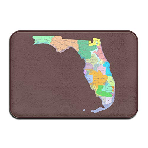 JNSHO-G Welcome Entrance Door Mats Florida State Map Doormat for Indoor Outdoor, Non Slip
