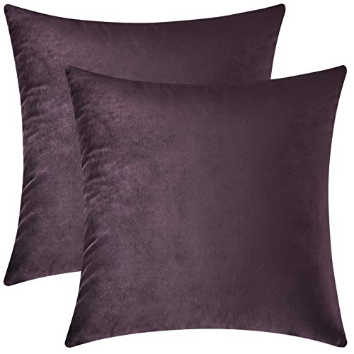 Mixhug Set of 2 Cozy Velvet Square Decorative Throw Pillow Covers for Couch and Bed, Deep Plum, 18 x 18 Inches
