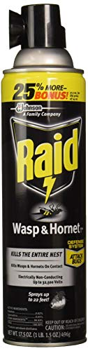 Raid Wasp & Hornet Killer Spray, 17.5 OZ (3 Pack)