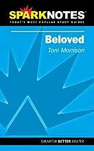 Spark Notes Beloved by Toni Morrison (2002-01-10)