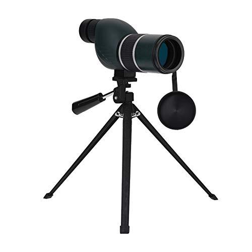 HD Zoom 12-36x50 Telescopio Monocular Portátil con Ampliación 12-36, Monoculares de Revestimiento Verde con Mini Trípode para Observación de Aves, Camping, Cazar, Concierto, Juegos Deportivos(