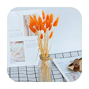 Funlife-Shop Natural Dried Flowers Lagurus White Artificial Flowers Colorful Fake Rabbit Tail Grass Ovatus Foxtail Bouquet Long Bunches-30-Orange-