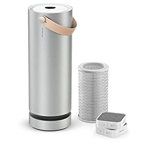 Molekule Air Large Room Air Purifier with PECO Technology for Allergens, Pollutants, Viruses, Bacteria, and Mold, Silver
