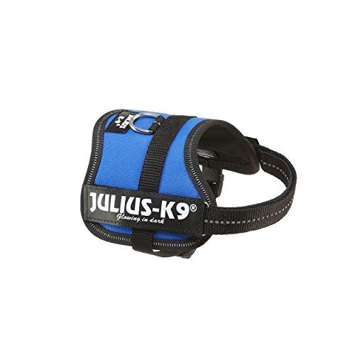 Julius-K9, 162B-BB1, Harnais K9 Power pour chiens, Taille: Baby 1, Bleu