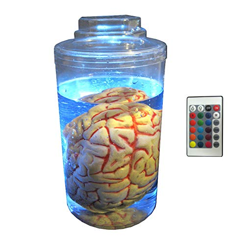Brain in Jar Halloween Decorations Body Parts