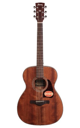 Ibanez AC240OPN Artwood Series Acoustic Guitar (Open Pore Natural)