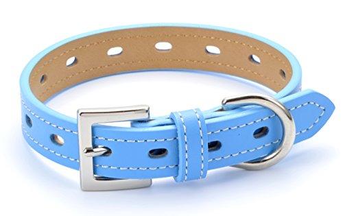 犬 首輪 犬の首輪 小型犬 中型犬用 革 おしゃれ ブルー No1 SSサイズ