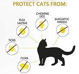 IMG-3 prozadalan collare antipulci per gatti
