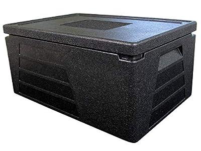 Termo profesional, recipiente térmico, caja aislante, nevera GN 1/1 con 230 mm de altura útil