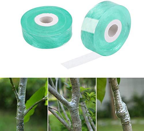 5 unidades de cinta para grapar de fruta, biodegradable, se puede utilizar para auto-adhesivo, película de semillas de árbol de fruta, transparente (verde)