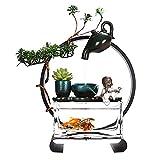 Pecera Ecológica De Vidrio Recirculante Pequeña, Pecera Dorada Redonda En El Escritorio De La Sala De Estar Y La Oficina, Acuario De Agua Sin Cambios