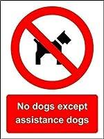 ブリキ看板のアルミ金属看板援助犬以外の犬1531部屋の看板の壁の芸術の装飾アルミ金属錫看板、屋外用の個人用金属看板