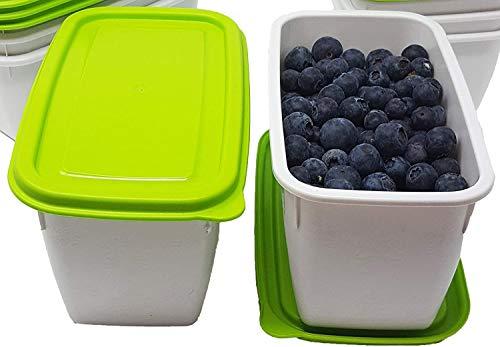 Greenline Boîtes de congélation, Plastique biologique, Vert/blanc, 8x 1 Liter
