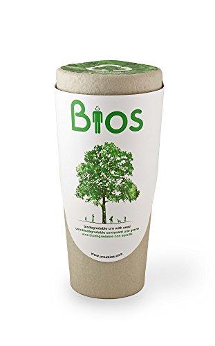 Urna Bios Urne biodégradable pour les cendres d'un Paradis