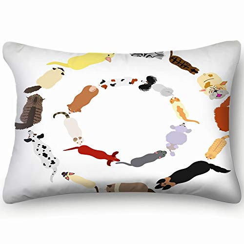 best & Dogs Cats Round Frame Set Animals Wildlife a lot Skin Cool Super Soft and Luxury Pillow Cases Covers Sofa Bed Throw Pillow Cover with Envelope Closure 2030 inch