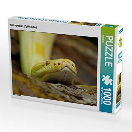 CALVENDO Puzzle Albinopython (Pythonidae) 1000 Teile Lege-Größe 64 x 48 cm Foto-Puzzle Bild von Kattobello