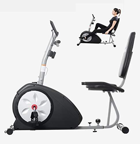 WGFGXQ Bicicleta reclinada Profesional Bicicleta de Ejercicio reclinada Bicicleta estática para el hogar Ergómetro Sistema de Control magnético Entrenador de Brazos y piernas para Anciano