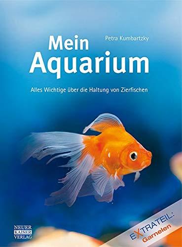 Mein Aquarium: Alles Wichtige über die Haltung von Zierfischen