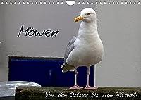 Moewen - Von der Ostsee bis zum Atlantik (Wandkalender 2022 DIN A4 quer): Ob in Warnemuende oder an der Algarve - Moewen gehoeren zum Meer wie die Wellen und das Rauschen. (Geburtstagskalender, 14 Seiten )