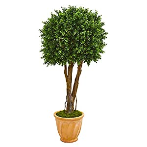 """Silk Flower Arrangements Nearly Natural 50"""" Boxwood Artificial Topiary Terracotta Planter UV Resistant (Indoor/Outdoor) Silk Trees Green"""
