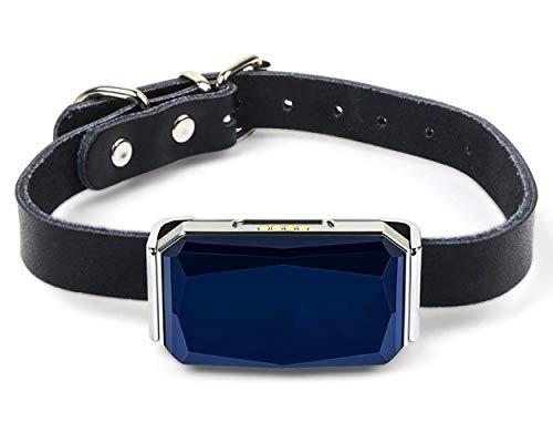 YMQUU Rastreador GPS para Perros, rastreador Impermeable de ubicación de Mascotas, Monitor de Actividad, Control de aplicación para Dispositivo de Seguimiento de Mascotas en Tiempo Real, 4G