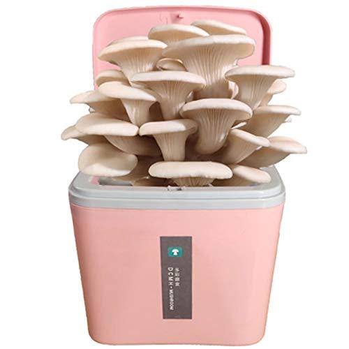 Cultive el Kit de Hongos Gourmet, Kit de Crecimiento de Hongos mágicos Interior, Cosecha y Come Fresco de mushroomegreen-Blanco ostra Seta (Color : Pink)