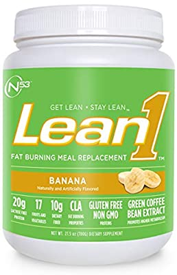 Nutrition 53 Lean 1 Meal Replacement Powder for Weight Loss, Fat Burner, Appetite Control Regular Tub 2500cc (15 Servings)