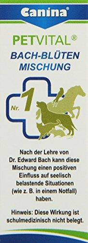 Canina Bach-Blüten No. 1, 1er Pack (1 x 10 g), 70001 1