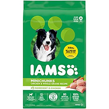 IAMS PROACTIVE HEALTH Adult Minichunks Small Kibble High Protein Dry Dog Food with Real Chicken 15 lb Bag