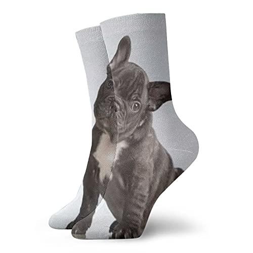 viata sock Francés Bulldog Buscando Camer Deportes Y Moda Ocio Serie Calcetines Clásicos Ocio Deporte Calcetines Cortos
