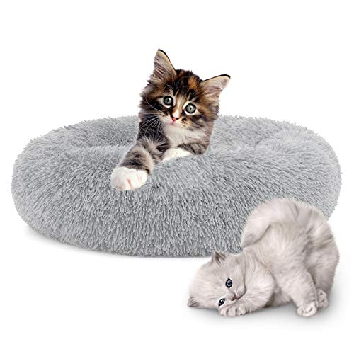 Cama Gatos Pequeños Marca HyAdierTech