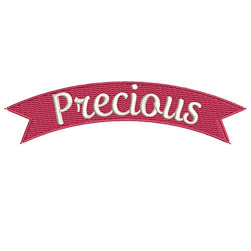 Precious - Rocker Style Embroidered Premium Patch Iron-On or Sew-On Embroidery Applique - Pink Romance Sweet Love Funny Humor - Fun Novelty Badge Biker Emblem - Vacation Tourist Souvenir