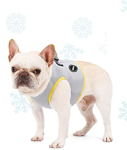 AMOY Dog and Cat Cooling Vest Hardness| Hiking Harness for Medium Large Dogs and All Cats| UV Protection| French Bulldog Harness (XL, Sliver)