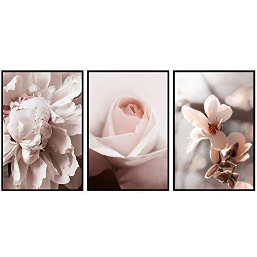 decomonkey   Poster 3er– Set schwarz-weiß Bilder Set Kunstdruck Wandbild Print Bilderrahmen Kunstposter Wandposter Posterset Blumen Rosa