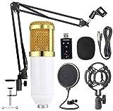 LHFSM Microfono de Condensador Kit, con el Brazo del Auge, Montaje de Choque, Pop Filter, Parabrisas y XLR de Cable, for la difusión, grabación, el Chat y Youtube