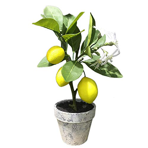 æ— Artificial Lemon Tree Plant Topiary Mini Potted Lemon Tree Artificial Fruit Lemon Tree Bonsai for Home Kitchen Office Table Decoration and Accessories, 12.2in