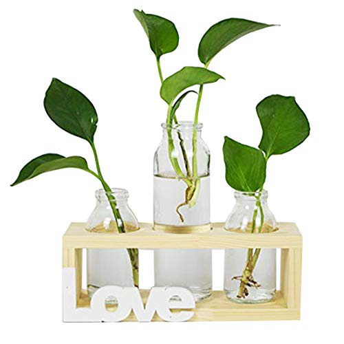 Floreros cilindricos de vidrio, jarron de vidrio para escritorio, bombilla con soporte de madera maciza retro para plantas hidroponicas, LOVE